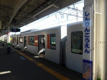 DSCN5205.JPG