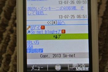 DSC_1433-1.jpg